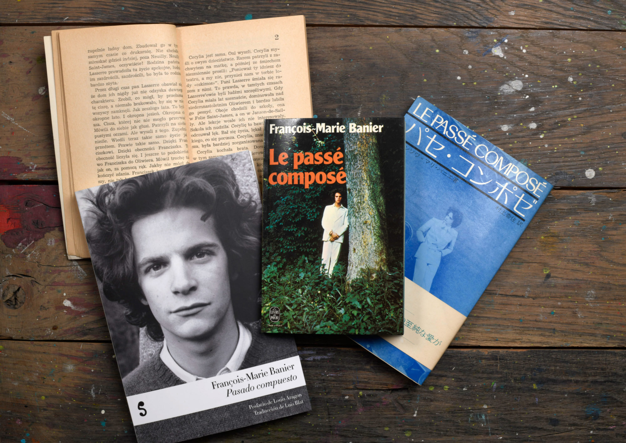 Le passé composé - François-Marie Banier