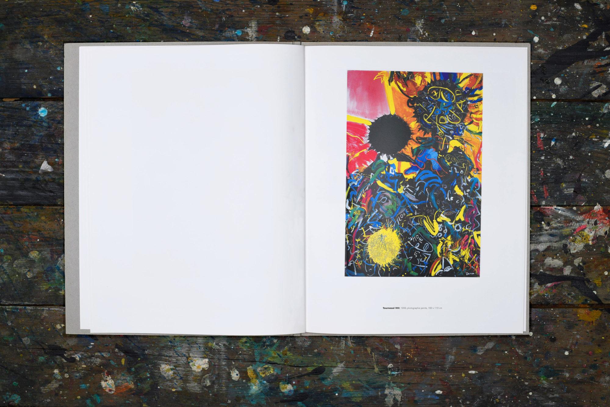 Couleur, signe, écriture : les habitants des images - François-Marie Banier