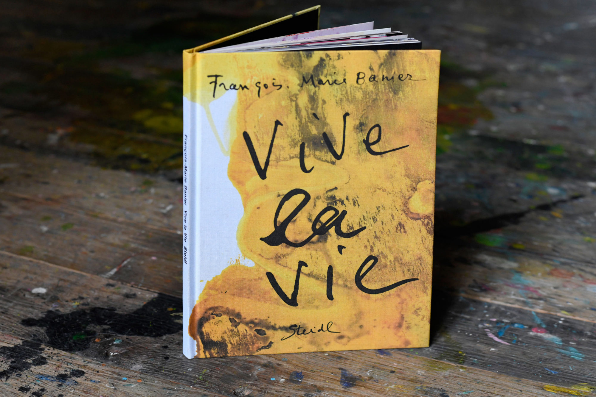 Vive la vie - François-Marie Banier